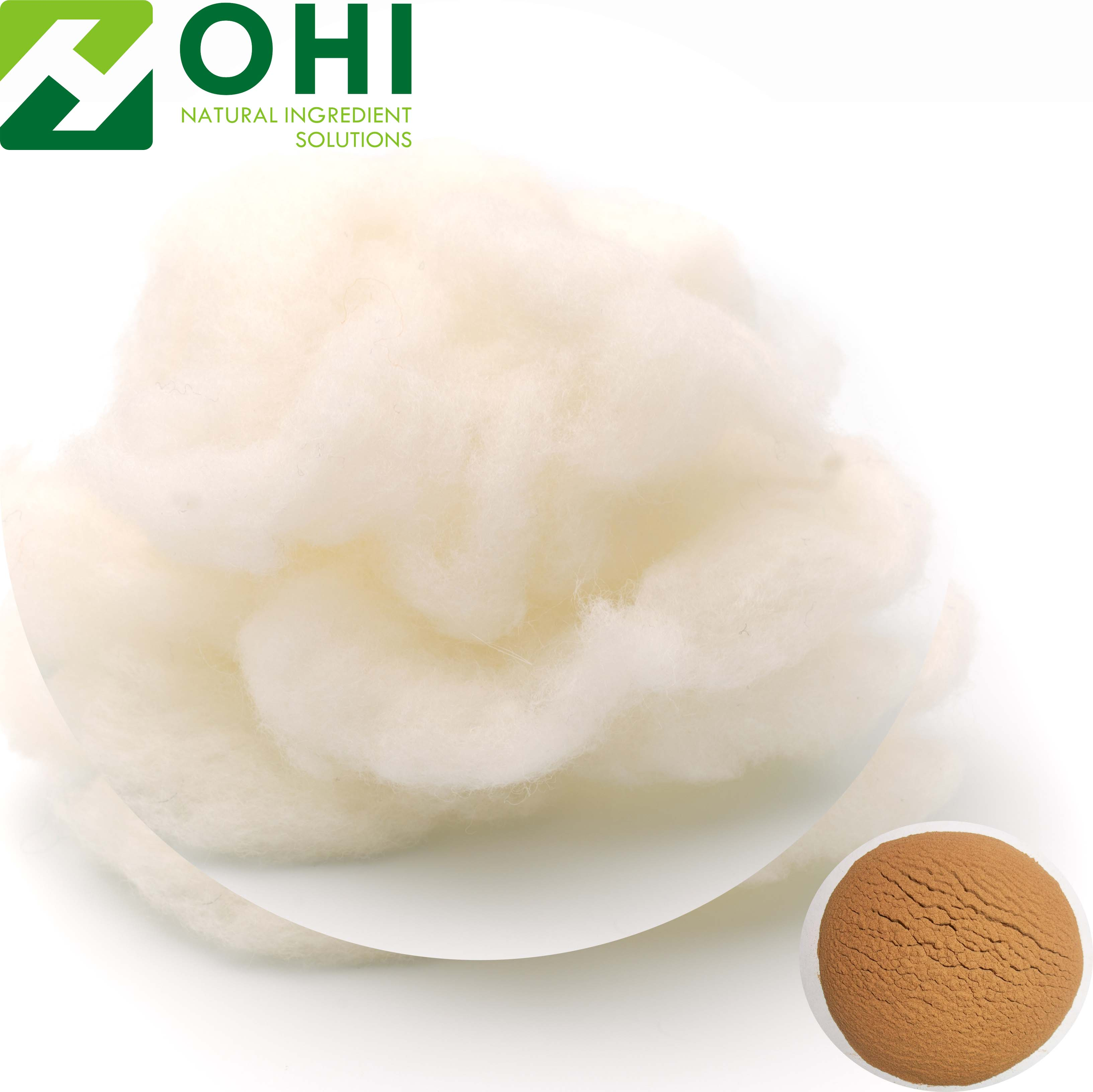 Wool Keratin extract